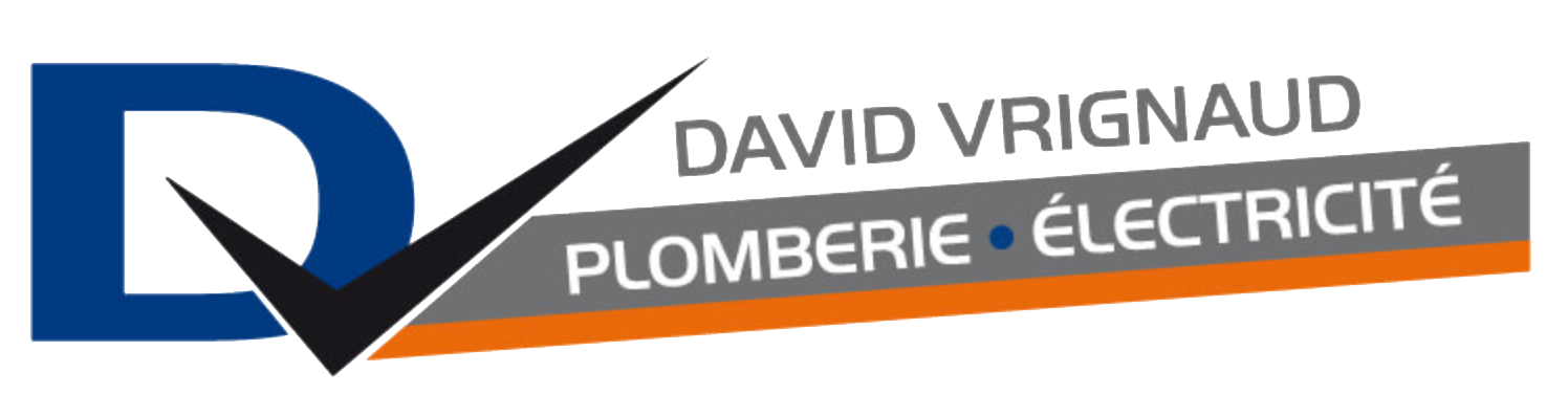 Logo vrignaud David